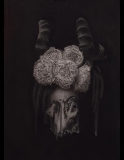 Charcoal Drawings-08